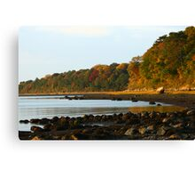 Shoreline Foliage Canvas Print