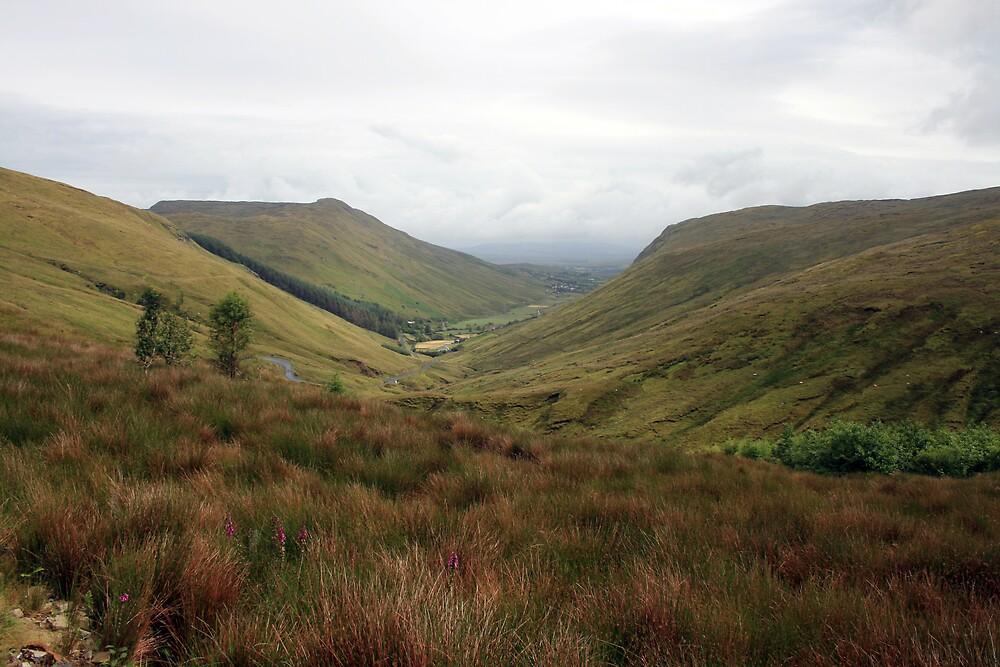 Rural Donegal by John Quinn