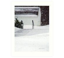 Snow Storm New England 2015  -2 Art Print