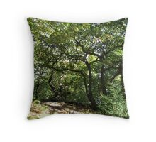 A walk in the woods Throw Pillow