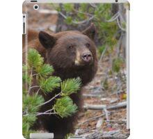 Black Bear with Cinnamon Color iPad Case/Skin