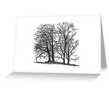 Trees Silhouette Greeting Card