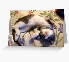 Comfortable  Greeting Card