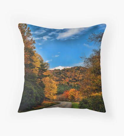 Parkway Throw Pillow