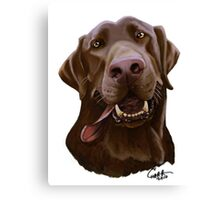Chocolate Lab Caricature Canvas Print