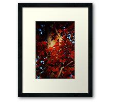 Autumn Blaze III Framed Print