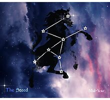 ES Birthsigns: The Steed Photographic Print