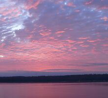 Campbell River Sunrise by Gail Bridger