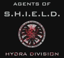 Agents of S.H.I.E.L.D. Hydra Division by prunstedler
