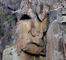 Rock Face by Elana Bailey