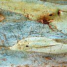 Swimming Upstream by Marguerite Foxon