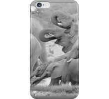 Elephant Family - Tusks and Trunks iPhone Case/Skin