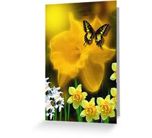 ~ DAFFODIL DELIGHT ~ Greeting Card