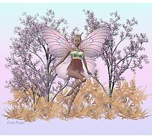 May Fairy Photographic Print