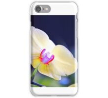 Single orchid bloom iPhone Case/Skin