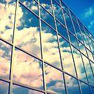 Looking Glass  by Solefield