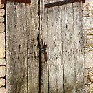 Old Barn Door by Pamela Jayne Smith