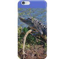 The Smiling Gator iPhone Case/Skin