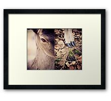diptych #3 Framed Print