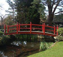 Bridge of Life by John Quinn