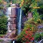 Twin Falls, Pickens, South Carolina by fauselr