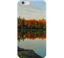 Fabulous Fall iPhone Case/Skin