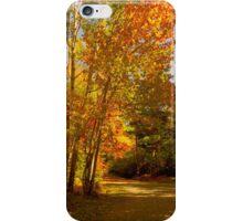 Take A Stroll iPhone Case/Skin