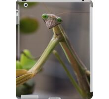 Stick insect on shrub 20150207 1503 iPad Case/Skin