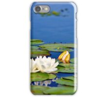 Fragrant Water Lily III iPhone Case/Skin
