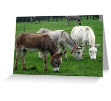 The Grass IS Greener Greeting Card