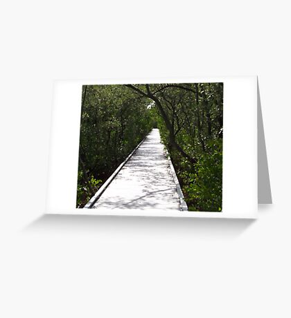 Four Mile Cove Ecological Preserve Greeting Card