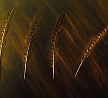 Golden Feathers Flock Together by Lindaglarsenart