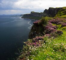 Isle of skye by Willy Vendeville