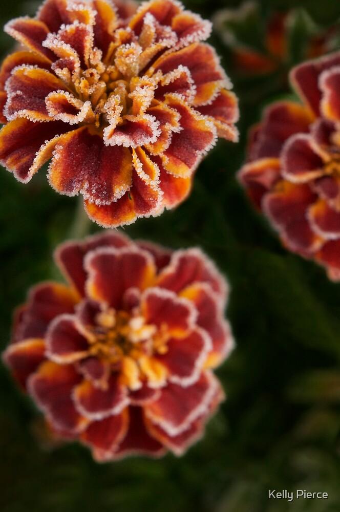 Marigold Margarita by Kelly Pierce