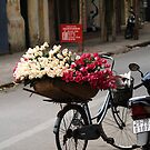 basket of roses : 939 views by stickelsimages