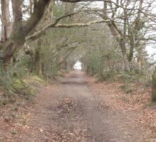 woodland path 1 Sticker
