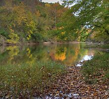 Kickapoo State Park - Vermillion River #3 by Jeff VanDyke