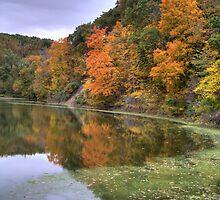 Kickapoo State Park - Number Six Lake by Jeff VanDyke
