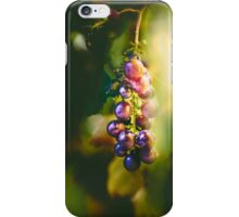 Pinot I iPhone Case/Skin