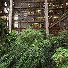 Indoor Garden, Atrium, Ford Foundation, New York City by lenspiro