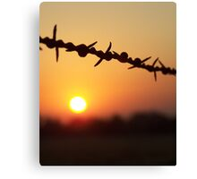 Barbed Beauty Canvas Print