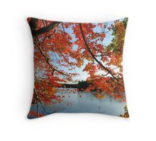 Red Arch Throw Pillow