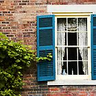 Window with Blue Shutters by CindyG