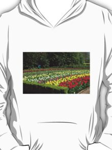 Tulips of Many Colours - Keukenhof Gardens T-Shirt