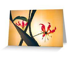 Ikebana Greeting Card
