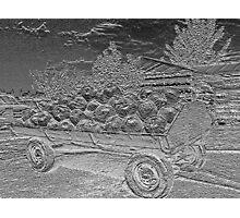 Silver Wagon Photographic Print