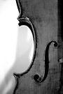 Violincello by Renee Hubbard Fine Art Photography