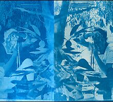 me again.... cyanotype postive and negative on arches watercolour paper by Juilee  Pryor