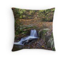 Fall Creek Gorge - Waterfall #2 Throw Pillow