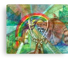 The Rainbow Cocoon Canvas Print